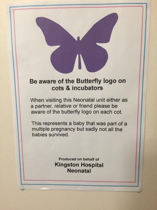 fioletowy motyl plakat szpitalny