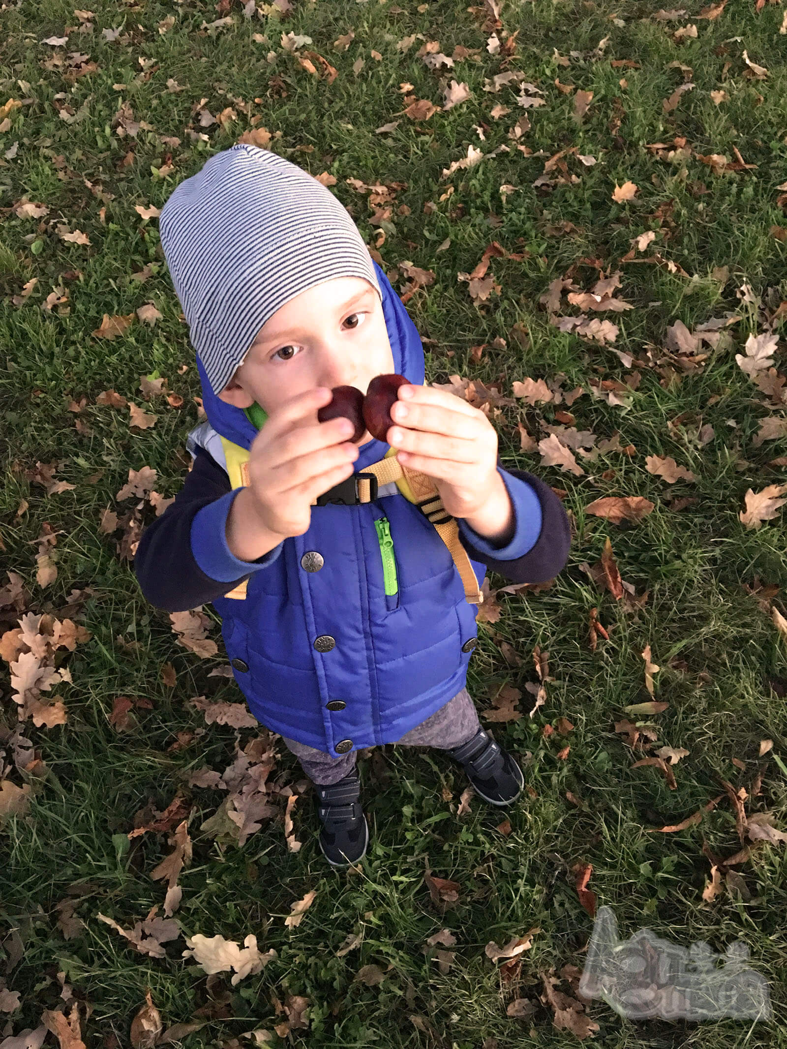 dzieciaki kochają jesień kasztany