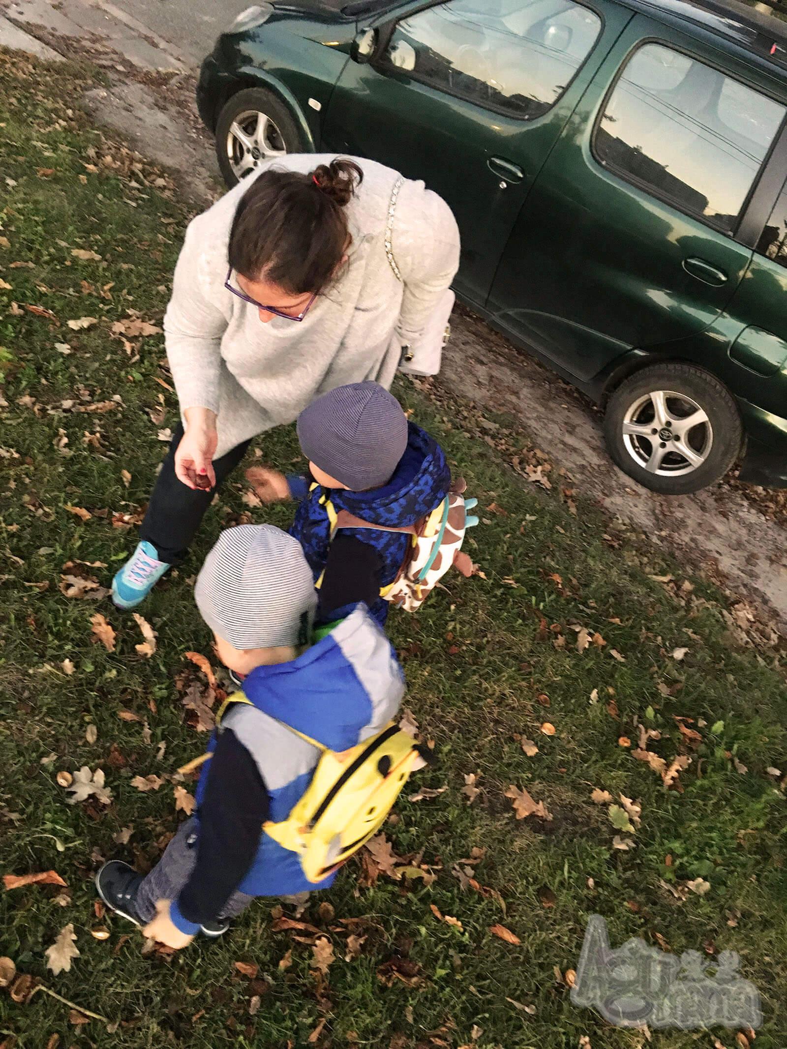 dzieciaki kochają jesień zbieranie kasztanów