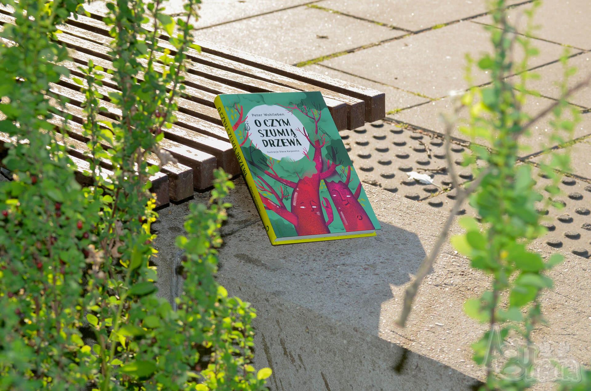 o czym szumią drzewa książka na ławce