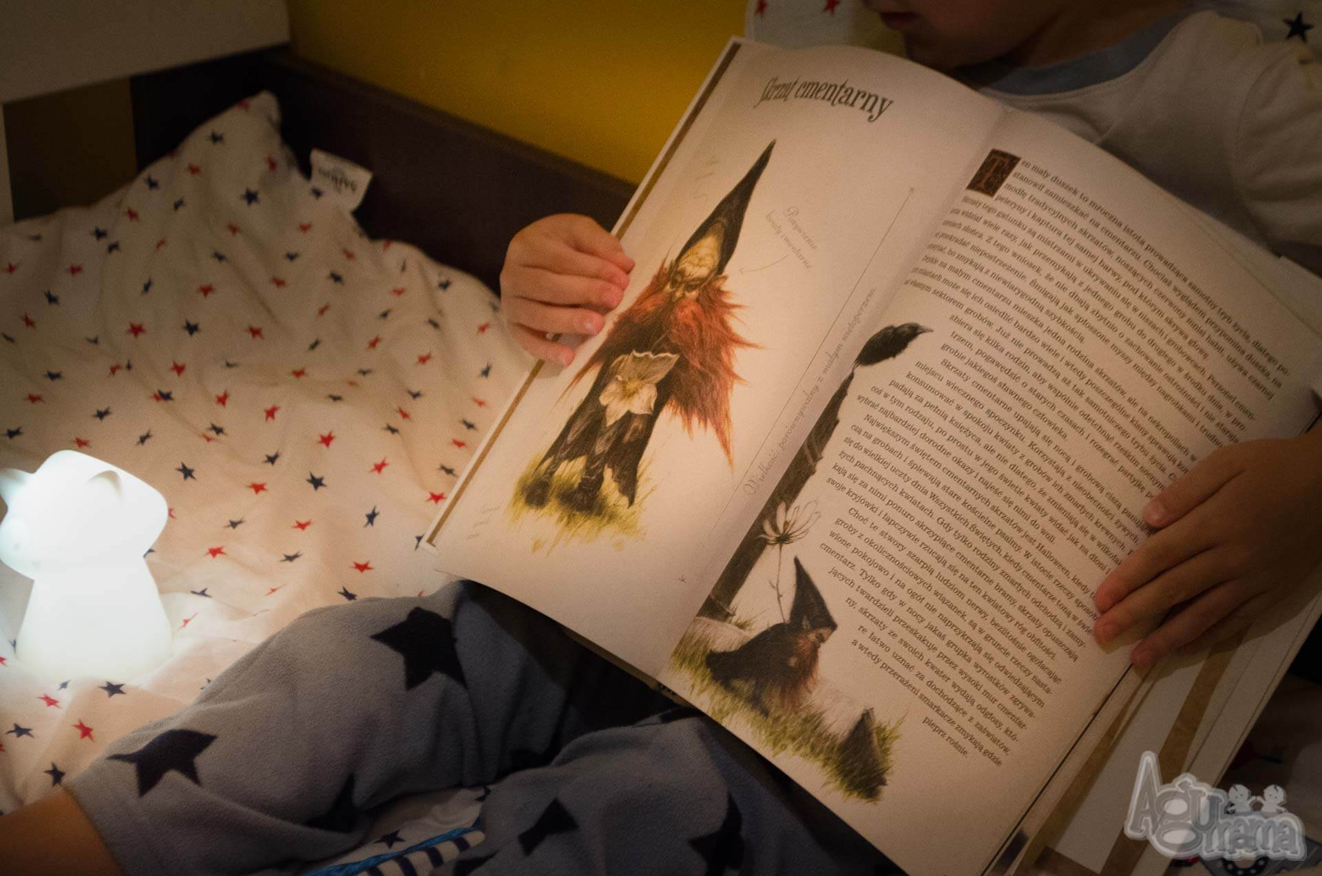 encyklopedia małych stworów