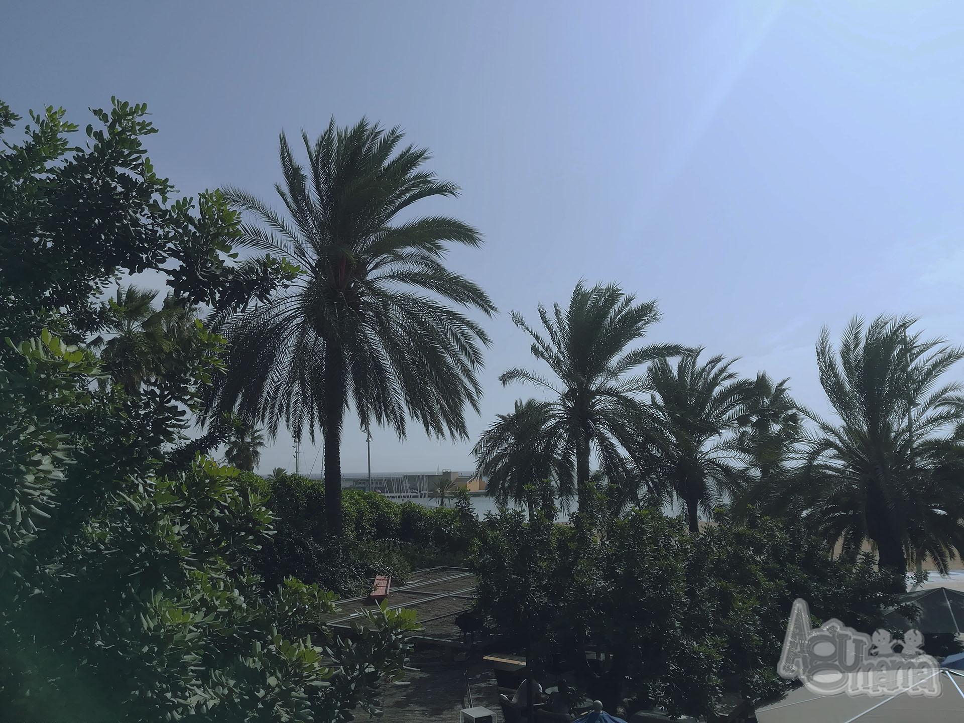 przerwa od macierzyństwa Puerto Olimpico