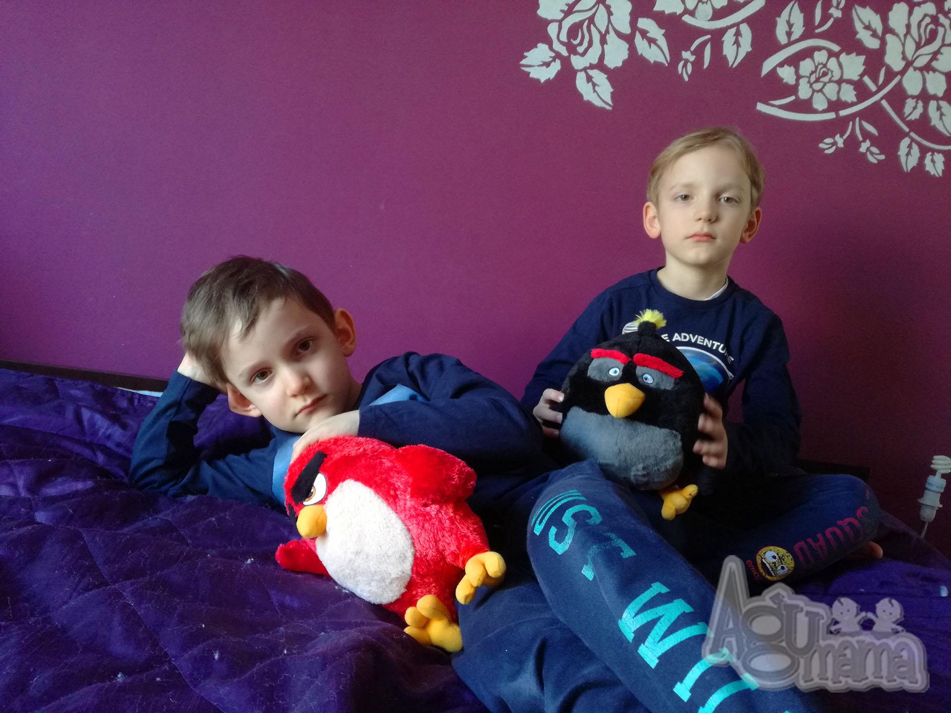 Fasolaki z pluszakami Angry Birds