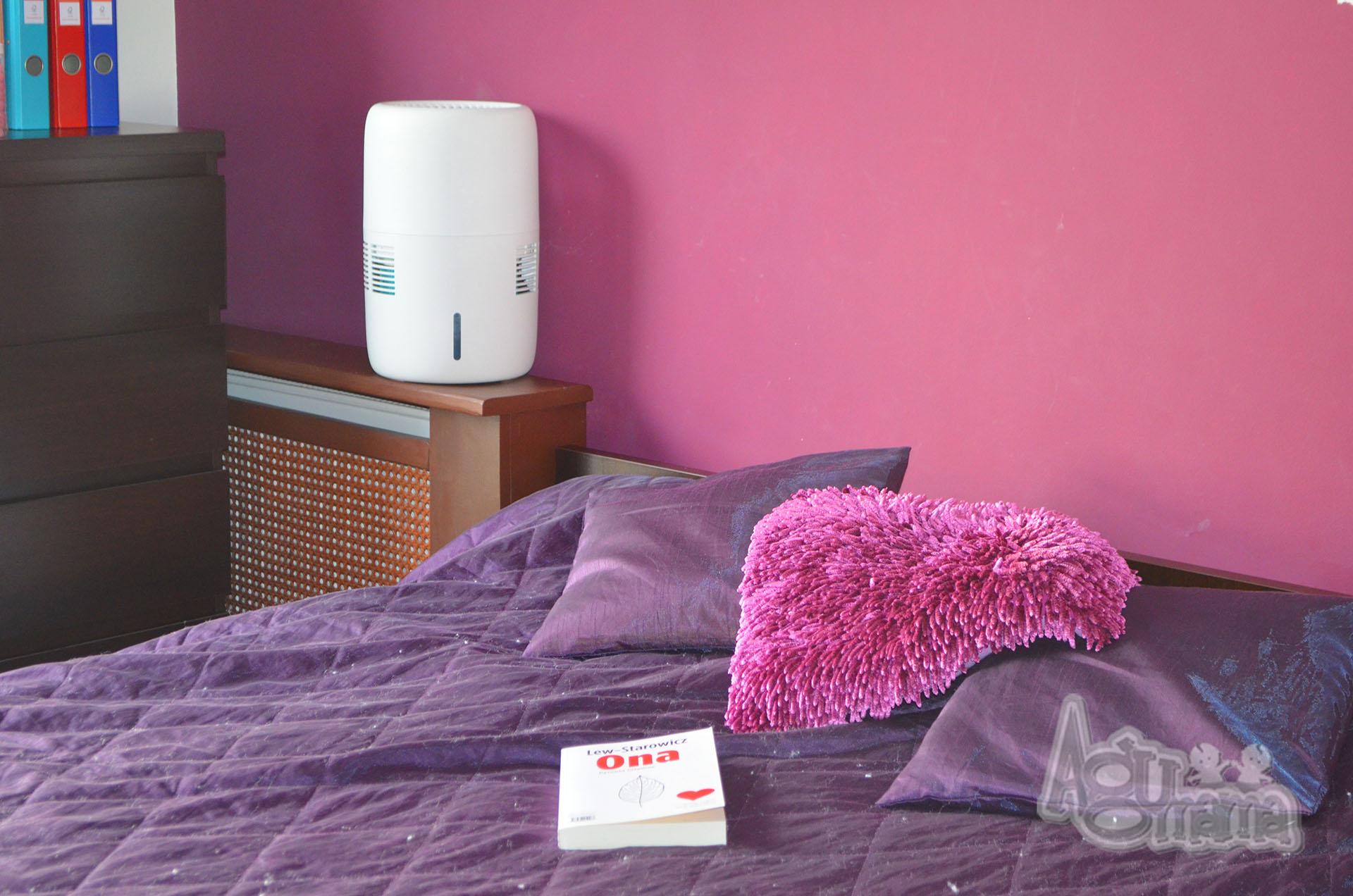 czy nawilżacz powietrza jest potrzebny w domu?