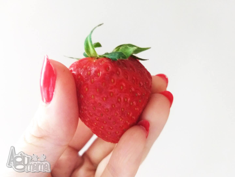 truskawkowe tiramisu truskawka